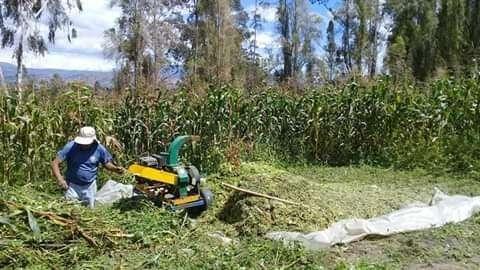 Vendo silo de maíz Contacto 0984123112