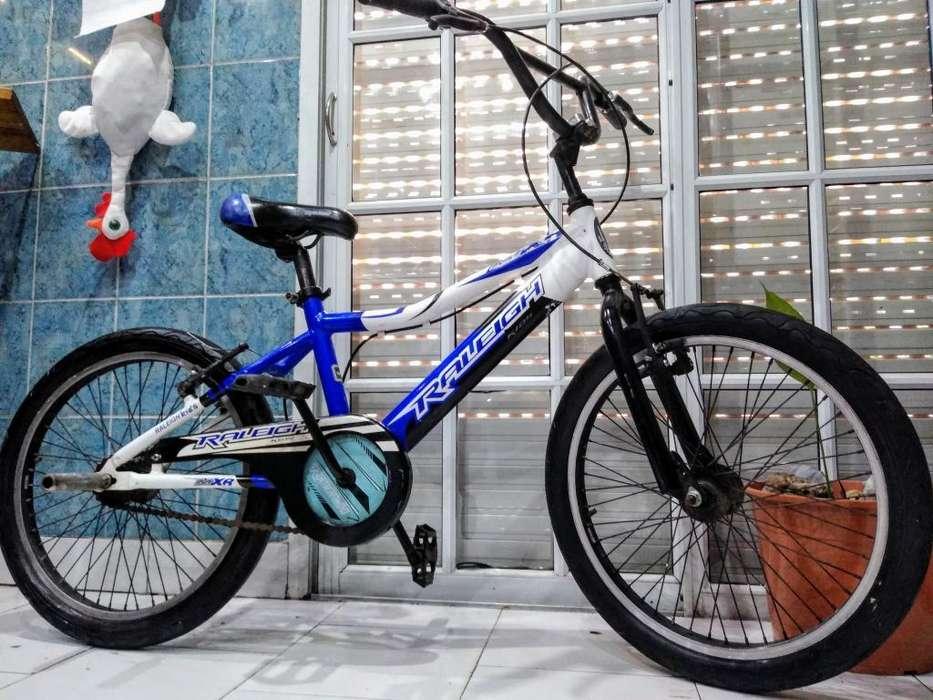 Bicicleta Bmx Marca Raleigh Rodado 20