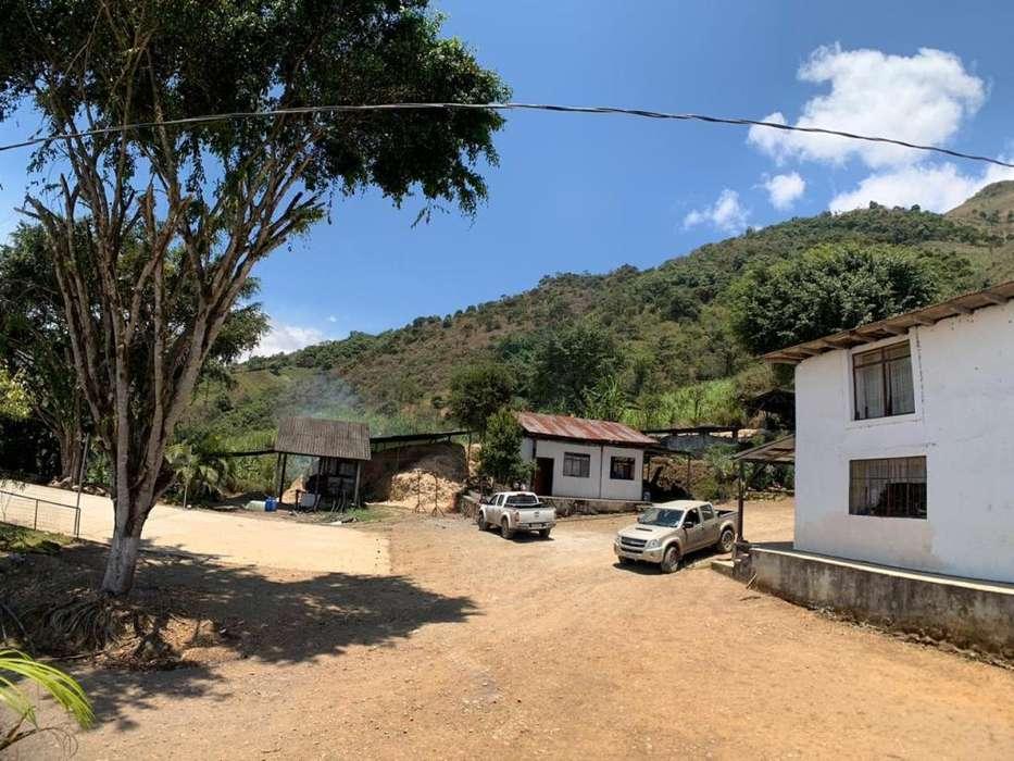 Propiedad en venta ubicado en Gualleturo, Cañar, Sector Bachirin