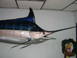 Marlin Azul Grande 3.80 Mt Pared