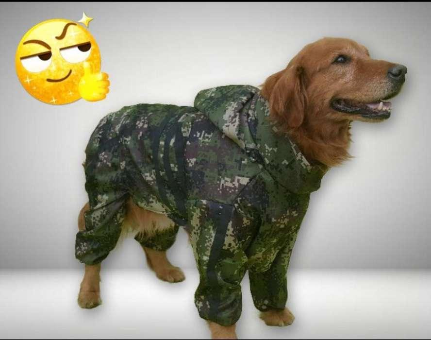 Disfraz de Militar para Perro Grande _