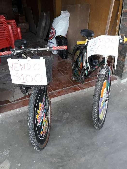 Dos Bicicletas Semi Nuevas