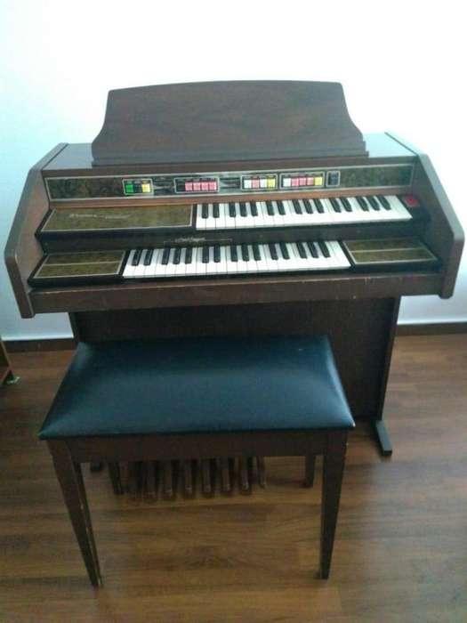 <strong>organo</strong> musical Thomas