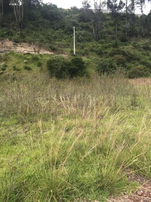 Venta Terreno El Valle