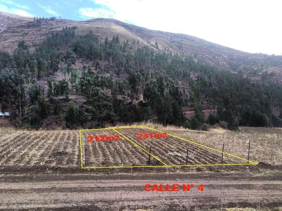 Vendo 2 lotes de Terreno en Apv Matao Pillao-San Jeronimo