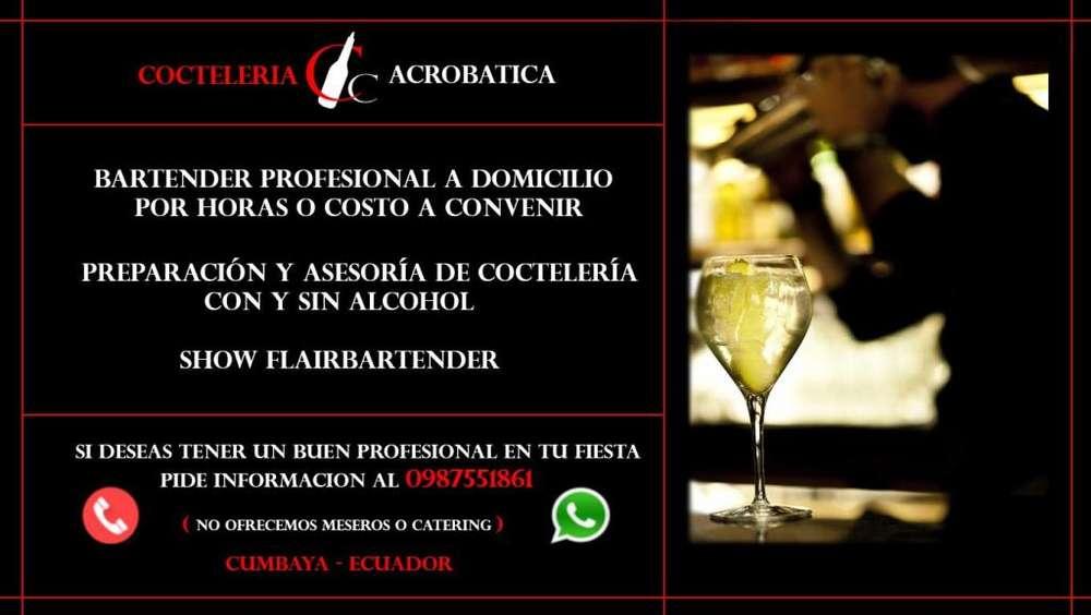Bartender Profesional a Domicilio,Cumbaya