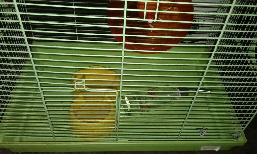 Hamstera Jaula para Hámster Muy Cómoda.