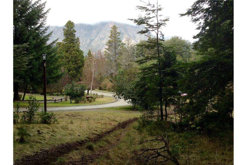 Lote boscoso en Arelauquen
