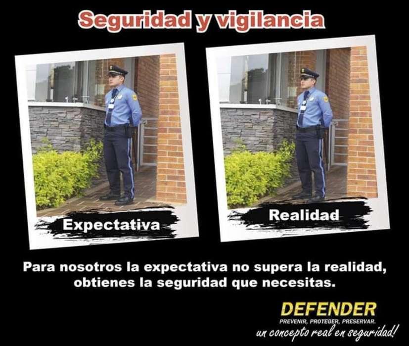Vigilancia Seguridad Defender