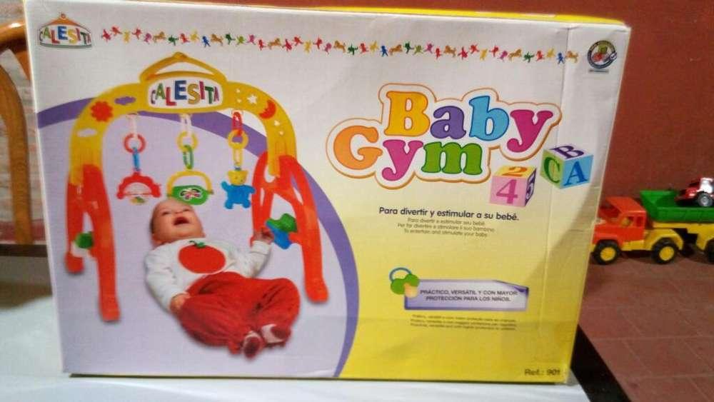 Gimnasio Calesita Baby Gym