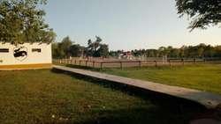 Casuarinas del Pilar Lote / N 58 - UD 68.720 - Terreno en Venta