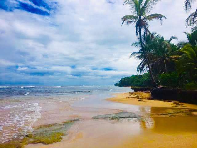 BEACH FRONT LOT BOCAS DEL TORO - FISH HOLE - 15,000 SQ METERS