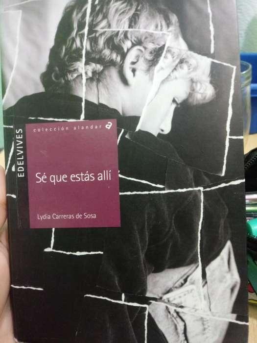 Novela Nueva