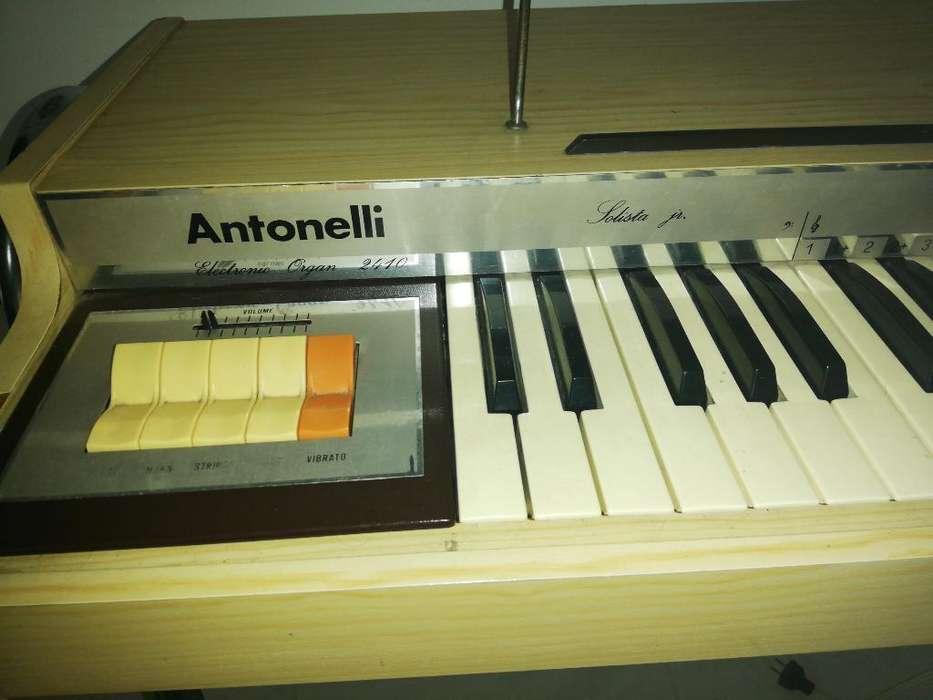 Organeta Antonelli Antigua
