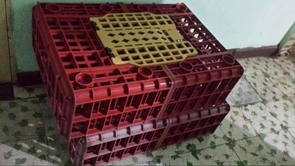 Vendo Guacales