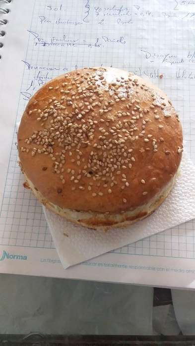 Solicito Panadero