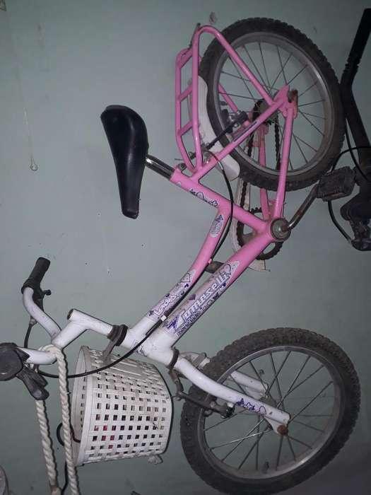 Bicicleta Tomaselli Rodado 16