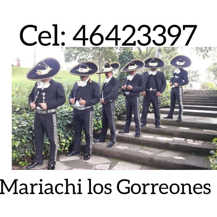 Mariachi Disponible