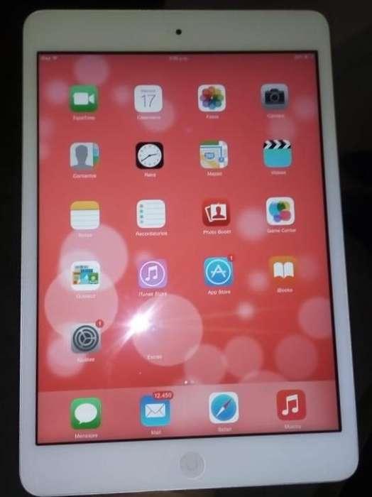 iPad Mini Wi-fi 16gb Silver Original Como Nueva
