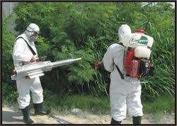 Fumigaciones Control de Plagas Urbanas. Ing. Agronomo.
