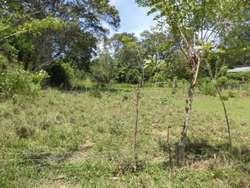 Lote En Venta En Santafe De Antioquia Vereda El Espinal Cod. VBMER198009