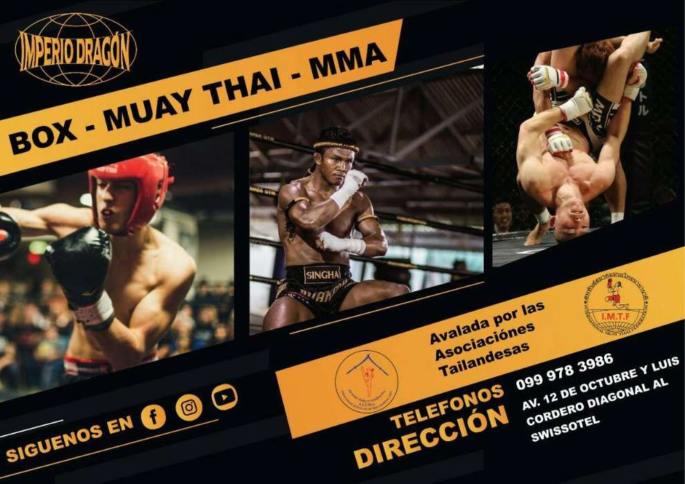 <strong>arte</strong>s Marciales Muay Thai, Box Y Mma