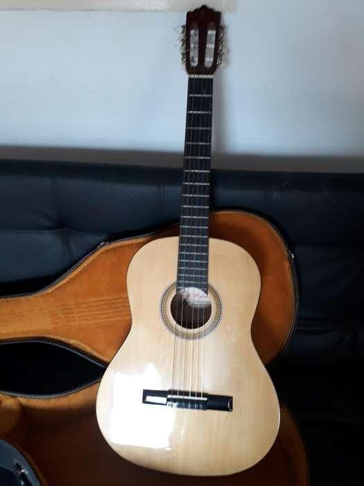 Guitarra Clásica Americana Palmer