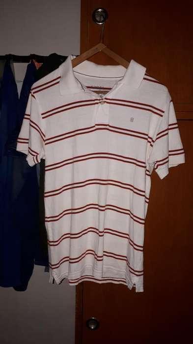 Chomba Y Camisa