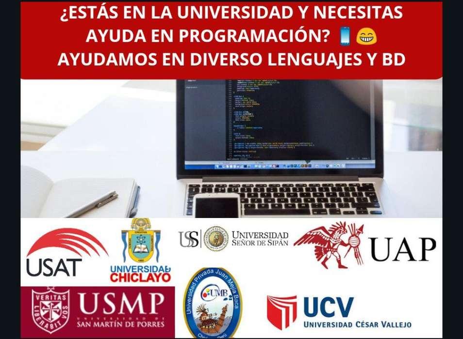 Programación para Universidades Y Empres