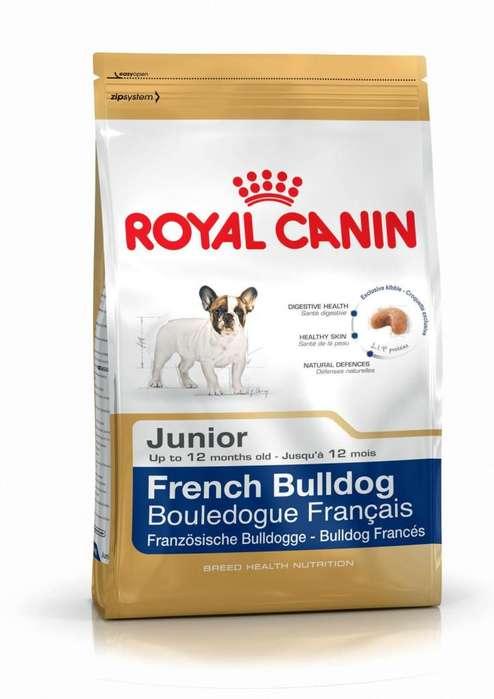ROYAL CANIN <strong>bulldog</strong> FRANCES entrega gratis Guayaquil
