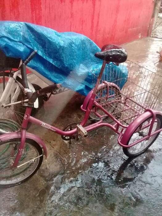 Bici Tres Ruedas O Tricicleta