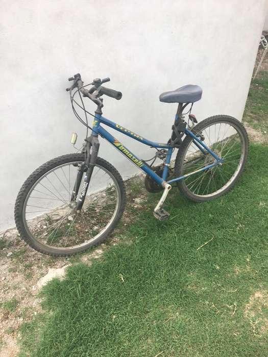 Bicicleta Mujer Tomaselli con Cambios