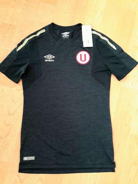 Camiseta Universitario Talla S M L Xl