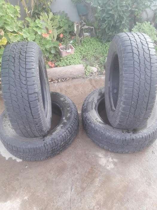 Cubiertas <strong>michelin</strong>