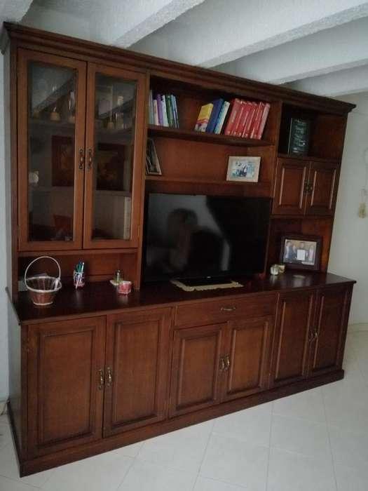 Biblioteca Flor Morado Y Triplex