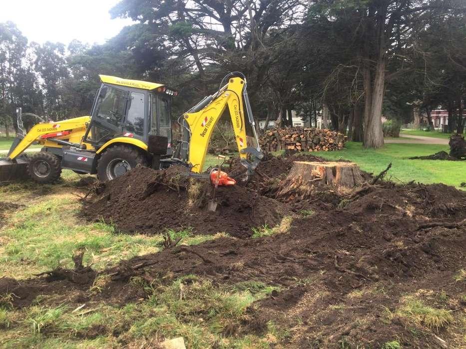 movimientos de suelo, plateas, zanjeos, excavaciones raices