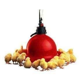 BEBEDEROS COLGANTES PARA <strong>pollos</strong>