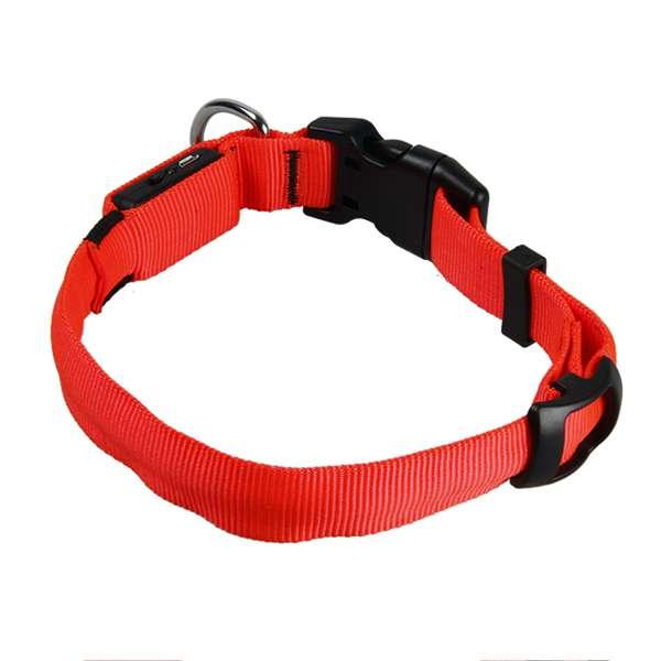 Collar Led Recargable Collar Premium