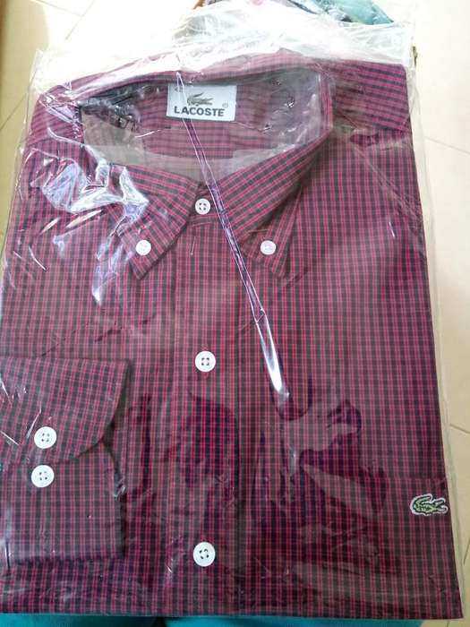 Camisas Polo Tallas S Peq M Med Y Xl