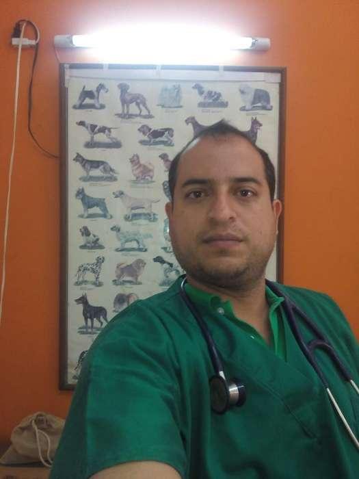 Servicio Médico Veterinario 24 Horas