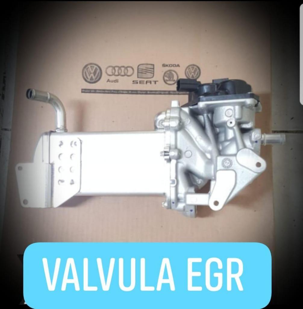 Repuesto Válvula EGR de Gases para volkswagen