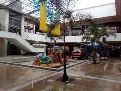 ARRIENDO DE LOCALES EN RINCON DE PIEDRA PINTADA IBAGUE  IBAGUE 711-35957