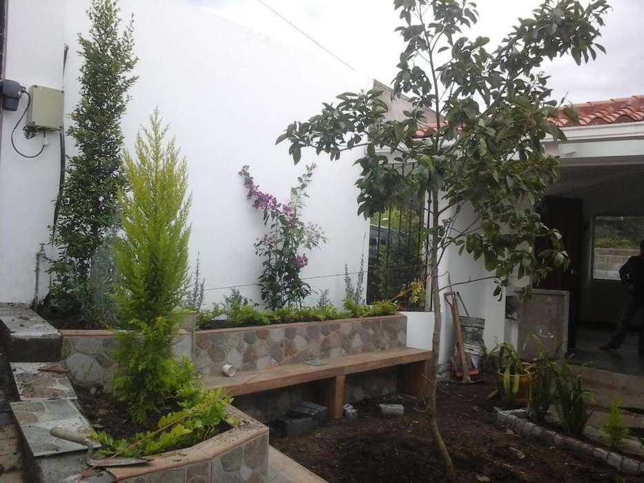 mantenimiento de jardines y colocacion de cesped