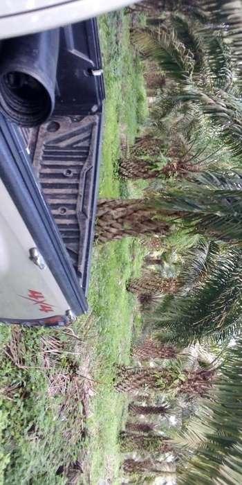 se vende linda hacienda de palma en produccion 9 hectareas