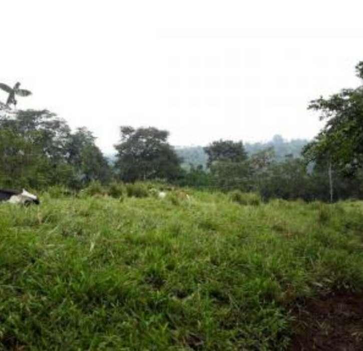 Quintas Vacacionales