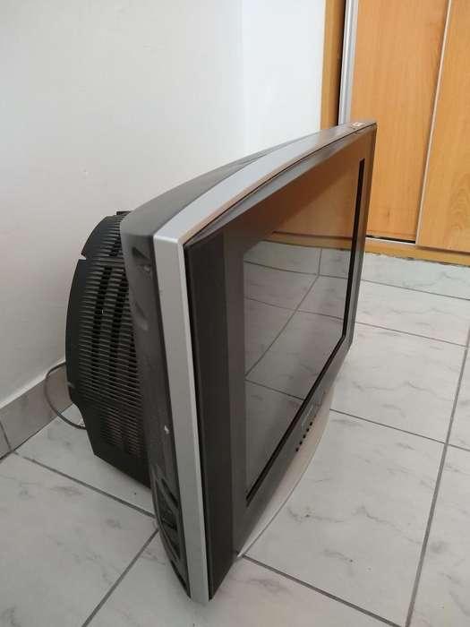<strong>televisor</strong> Samsung Slim 21'