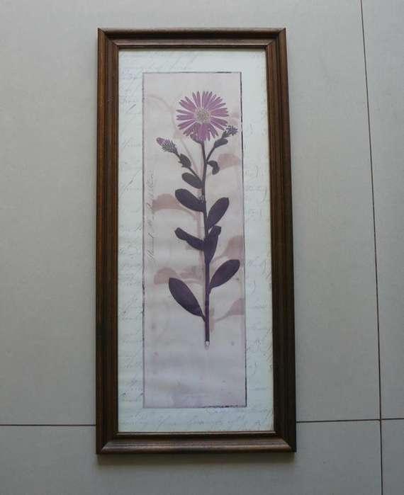 Cuadro con imagen de flor sobre papel antiguo - Se retira x Belgrano (C.F.)