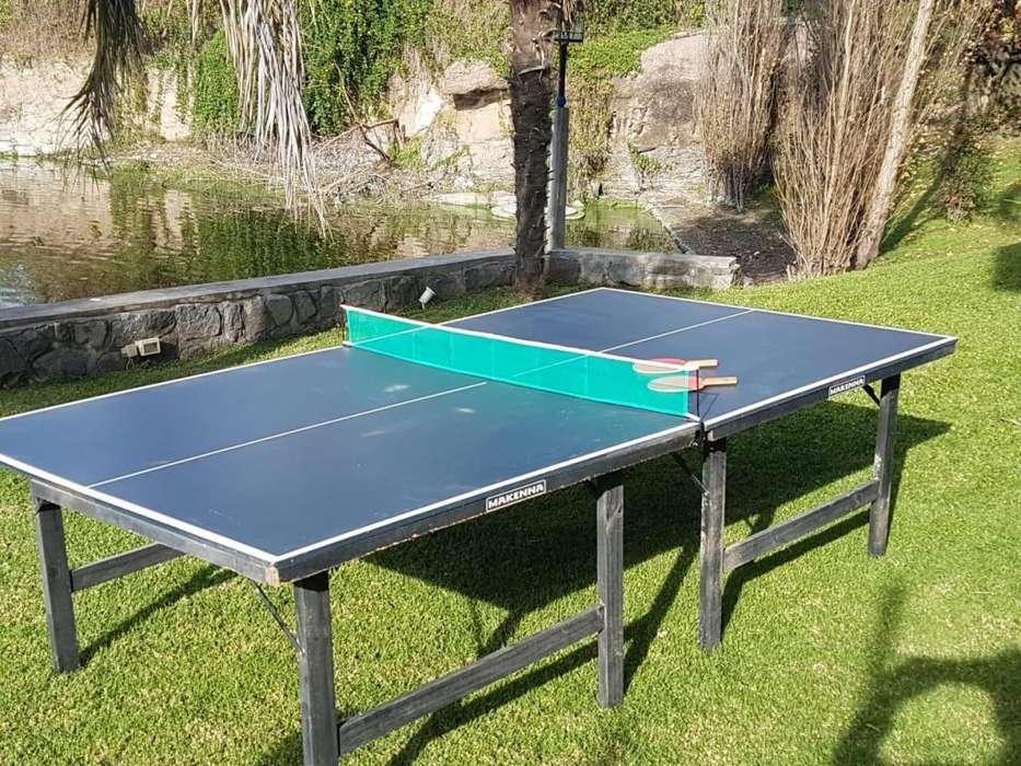 Mesa de ping pong de madera usada