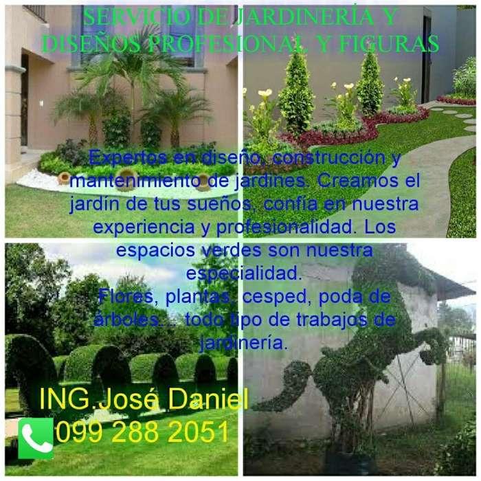 Diseños Profesional de Jardines