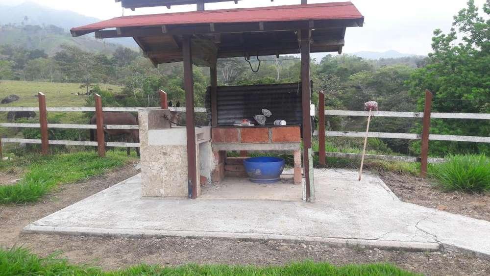 Vendo finca bien barata cerca a la represa de Porce 2 de 3 hectáreas.